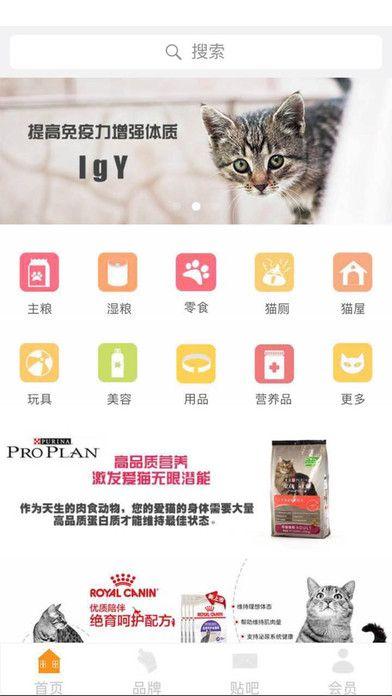 爱猫部落app手机版  v1.0图3