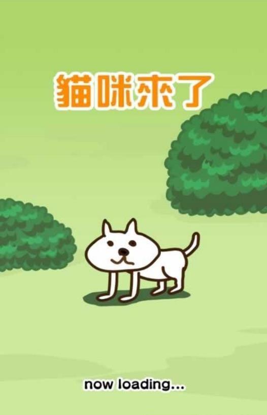 猫咪来了游戏安卓版  v1.7.3图4