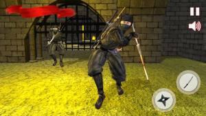 忍者刺客战士破解版图1