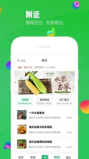 出城游app图4