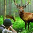 经典猎鹿人