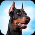 杜賓狗模擬器安卓官方版
