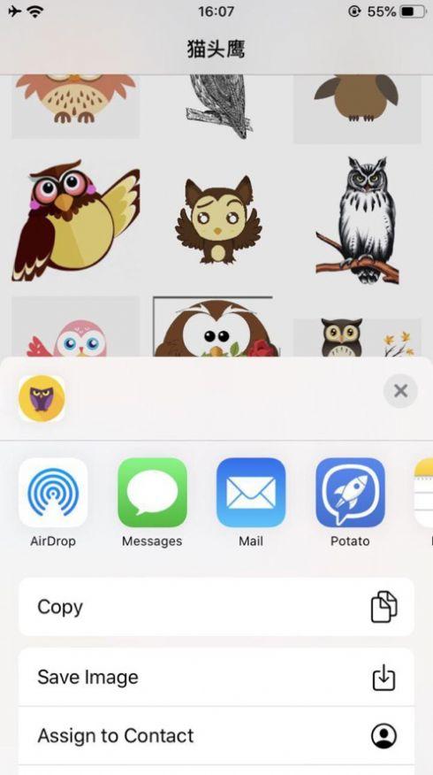 夜猫子猫头鹰贴纸安卓版  v1.0图1